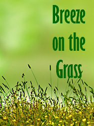 Breeze on the Grass